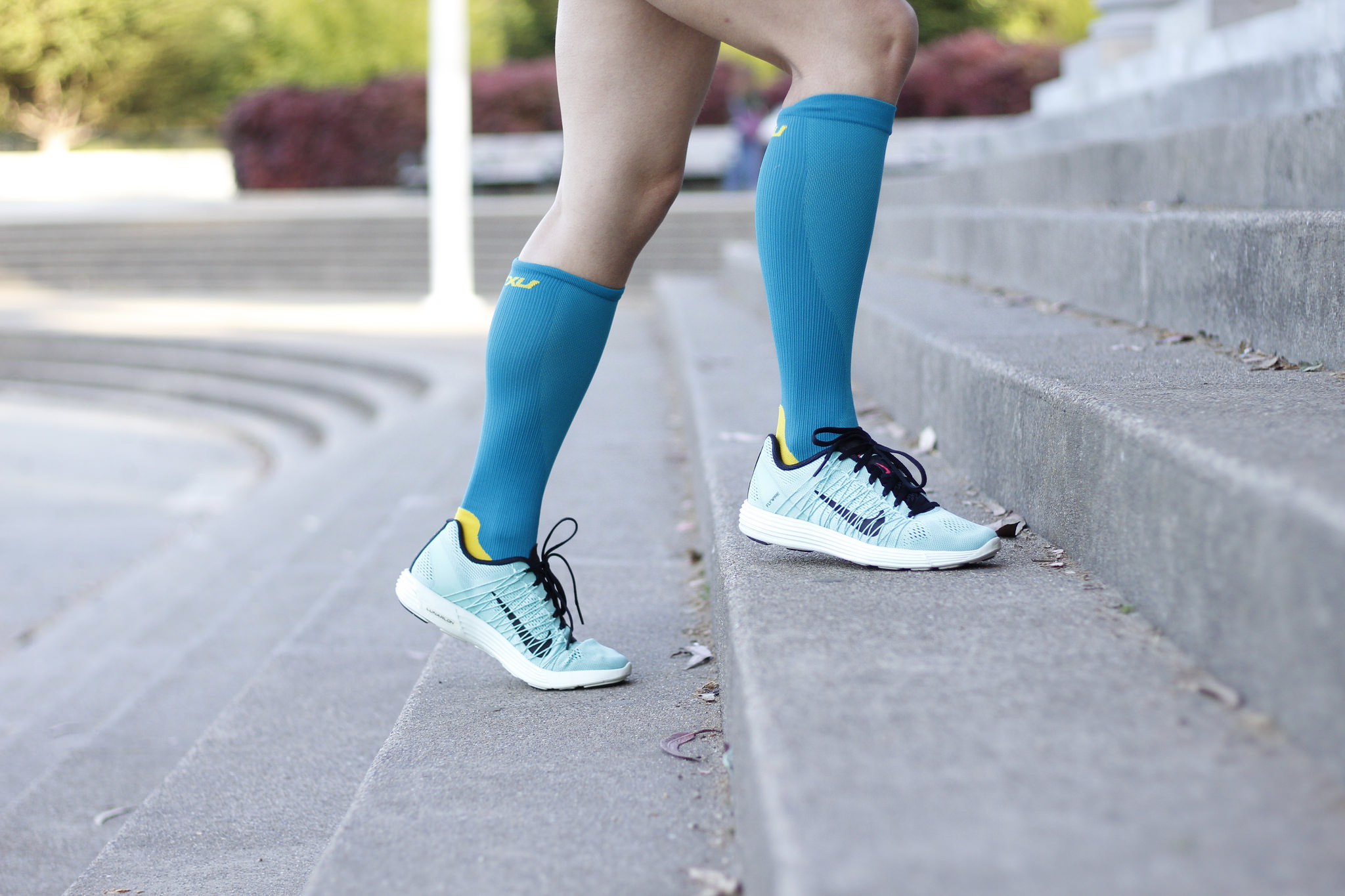 Compression Socks - Berniedette of Petite And Toned big